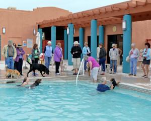Academy Village Pool